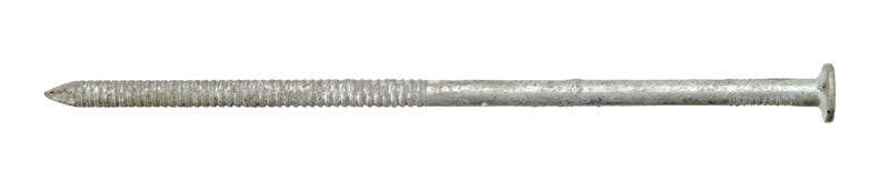 Ace  6 in. L Timber Tie  Galvanized  Nail  Flat Head Annular Ring Shank  5 lb.
