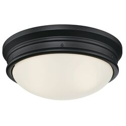 Westinghouse Meadowbrook Switch Incandescent Matte Black Wall Pack Light Fixture Hardwired