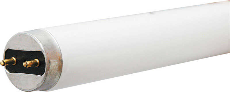 GE Lighting  28 watts T8  48 in. L Fluorescent Bulb  Bright White  Linear  2675 lumens 1 pk