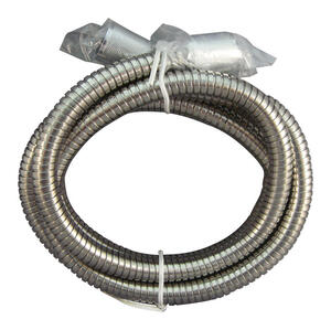 Ace  Stainless Steel  Shower Hose