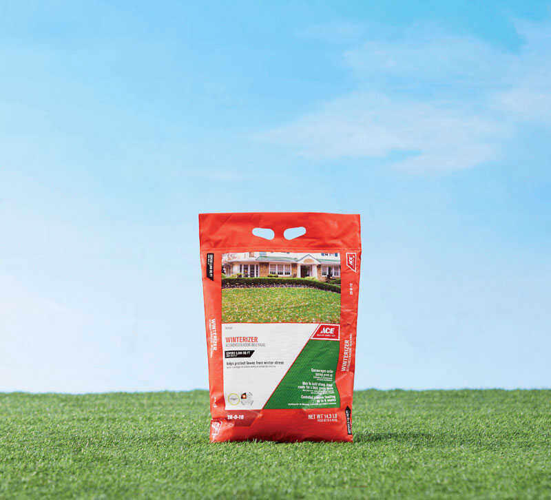 Ace 28 0 10 Winterizer Lawn Fertilizer For All Grass Types