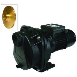 Burcam  2 hp 4200 gph Cast Iron  Sprinkler Pump