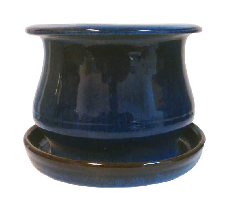 Trendspot  6 in. H x 6 in. W Blue  Ceramic Pot