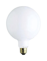 Westinghouse  100 watts G40  Globe  Incandescent Bulb  E26 (Medium)  White  1 pk