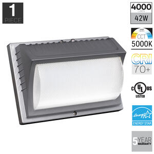 Honeywell  Dusk to Dawn  Plug-In  Gray  Security Wall Light