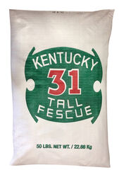 Barenbrug Kentucky 31 Tall Fescue Full Sun/Medium Shade Grass Seed 50 lb.
