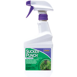 Bonide  Sucker Punch  Growth Regulator  RTU Liquid  16 oz.