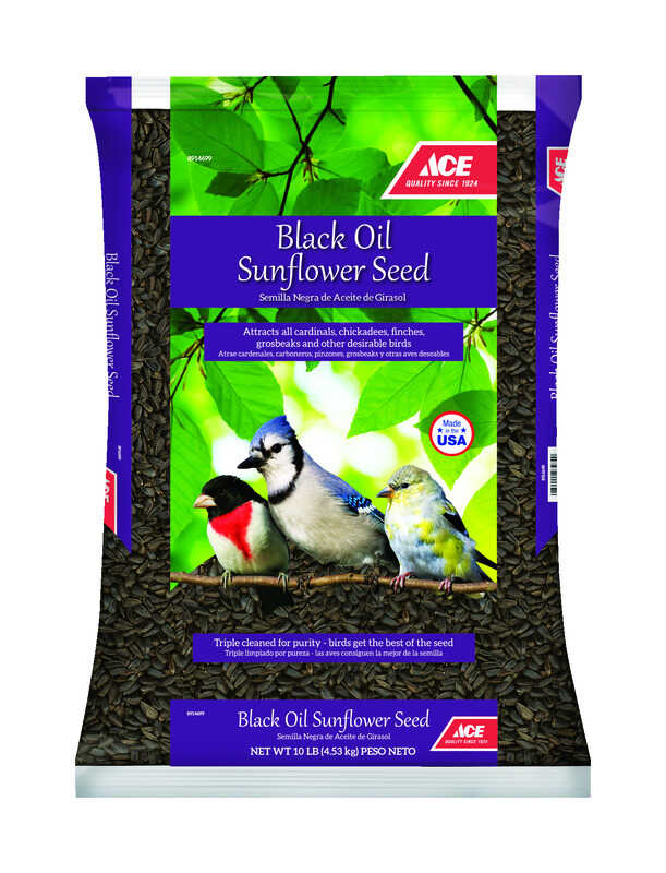 Ace  Assorted Species  Black Oil Sunflower Wild Bird Food  Black Oil Sunflower Seed  10 lb.