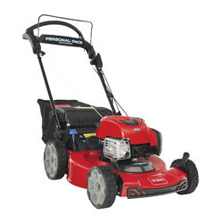 Toro Recycler 21464 22 in. 150 cc Gas Self-Propelled Lawn Mower