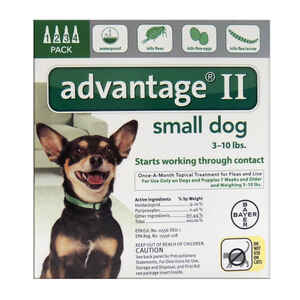 Bayer  Advantage II  Liquid  Dog  Flea Drops  Imidacloprid/Pyriproxyfen  0.056 oz.