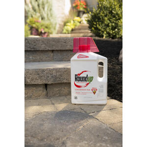 Roundup  Weed and Grass Killer  Concentrate  0.5 gal.