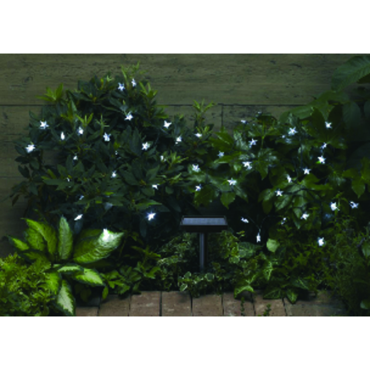 Smart Solar  LED  White  String Light Set  Clear  237 in. 30 lights