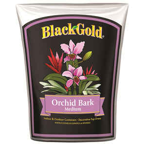 Black Gold  Brown  Orchid Bark  8 qt. Mulch