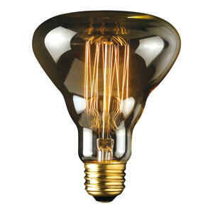 Globe  Labo  40 watts R30  Decorative  Incandescent Bulb  E26 (Medium)  Amber  1 pk