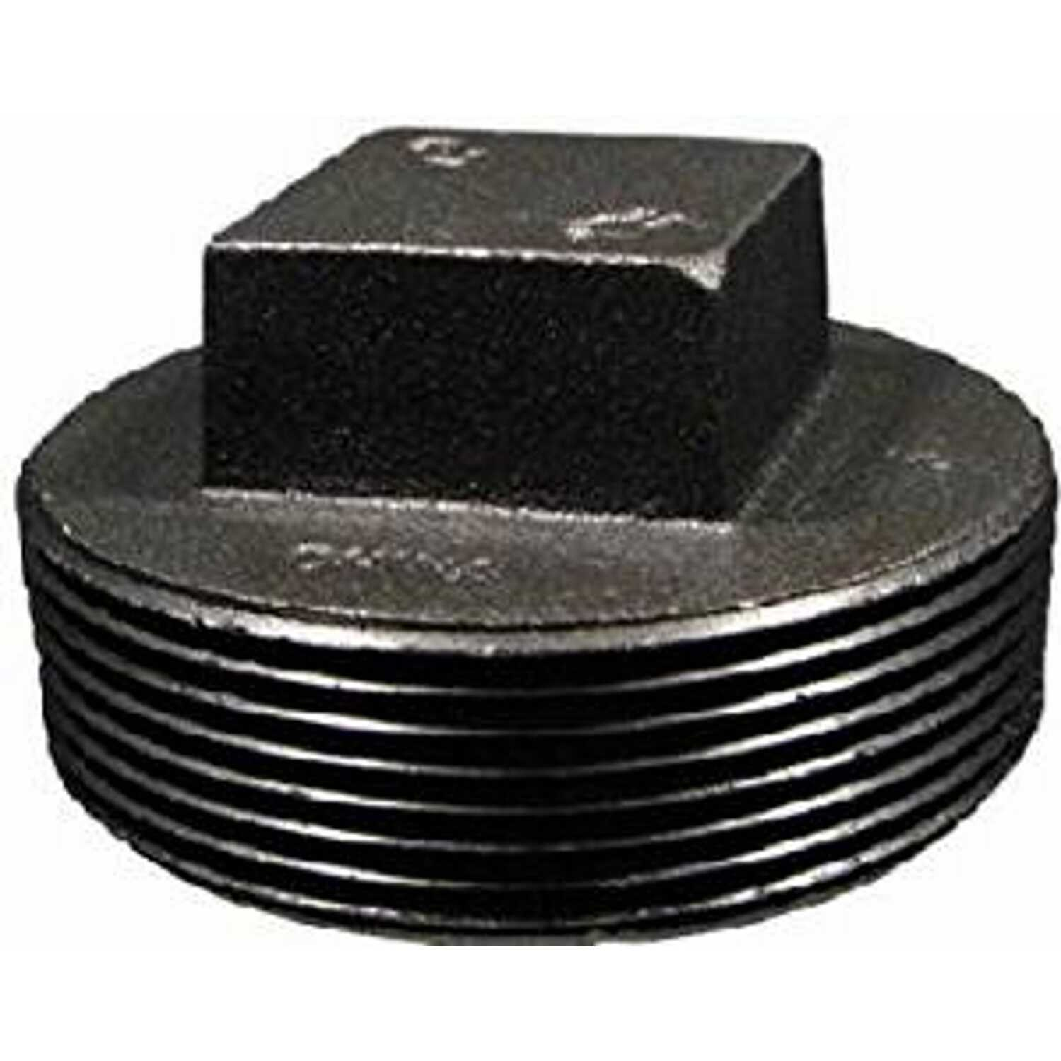 BK Products  Southland  2-1/2 in. MPT   x 2-1/2 in. L Black  Malleable Iron  Square Plug Head