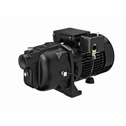 Ace  1 hp 1260 gph Cast Iron  Shallow Well Pump