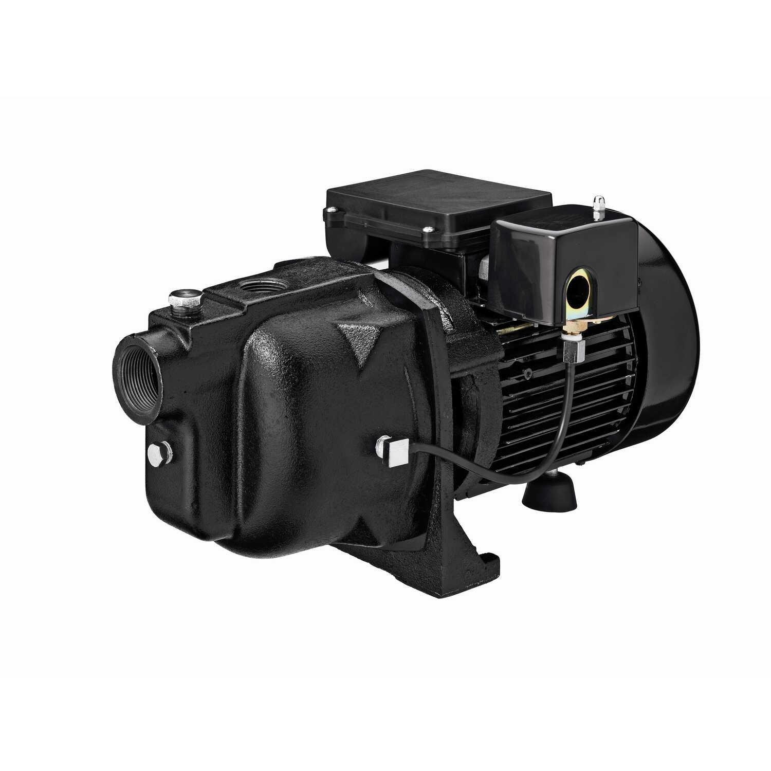 Ace  Cast Iron  Shallow Well Jet Pump  1 hp 21  230 volts