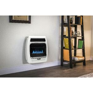 Dyna-Glo  Blue Flame  300 sq. ft. 10000 BTU Natural Gas/Propane  Wall Heater