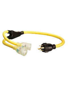 Coleman Cable  10/4 STOW  250 volt 3 ft. L Generator Cord