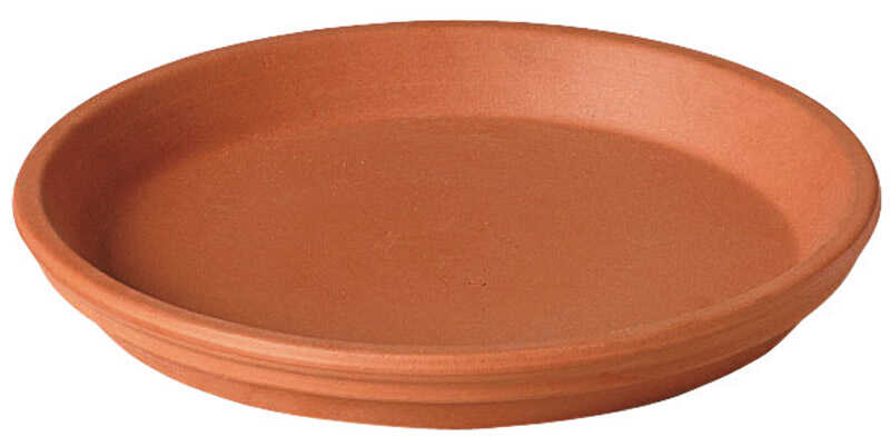 Deroma  1 in. H x 6.75 in. W Terracotta  Clay  Traditional  Plant Saucer