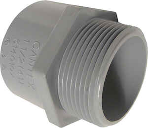 Cantex  1-1/2 in. Dia. PVC  Male Adapter  1 pk