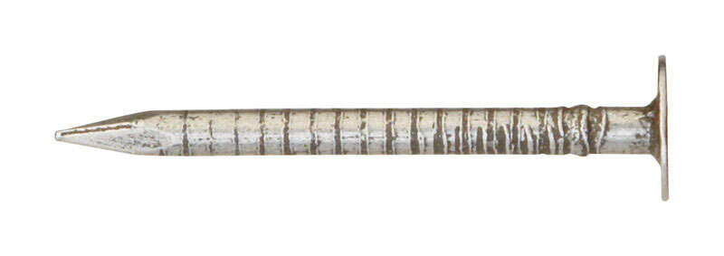 Ace  1-1/4 in. L Drywall  Steel  Nail  Flat Head Annular Ring Shank  1 lb.