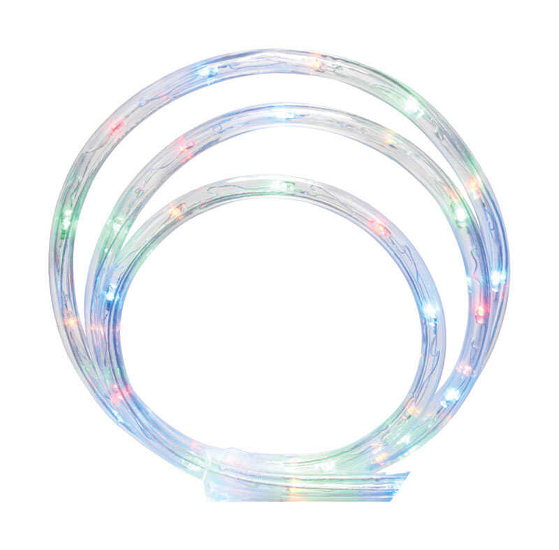 Celebrations  LED Rope  Light Set  Multicolored  Plastic  1 pk