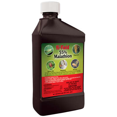 Hi-Yield  55% Malathion Spray  Liquid Concentrate  Insect Killer  16 oz.