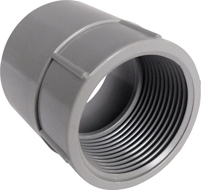 Cantex  1/2 in. Dia. PVC  Female Adapter  1 pk