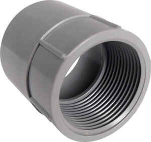 Cantex  1/2 in. Dia. PVC  Female Adapter  For PVC 1 pk