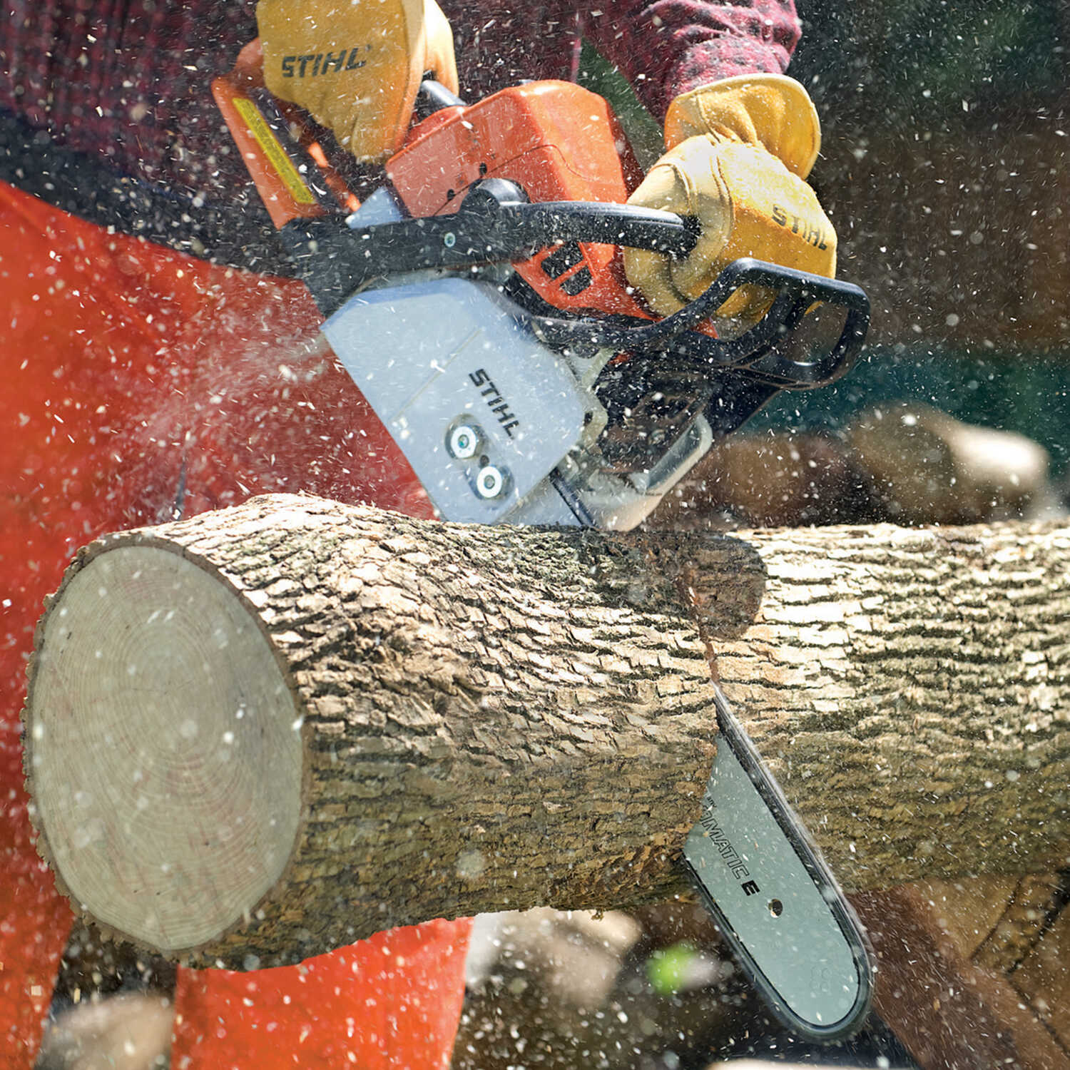 STIHL 18 in  Gas Chainsaw MS 250 - Ace Hardware