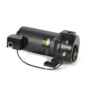 Ecoflo  Cast Iron  Deep Well Pump  1 hp 1000  230 volt