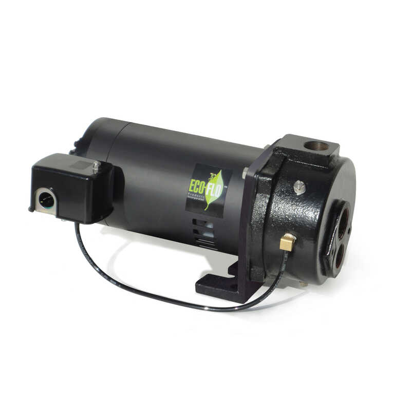 Ecoflo  1 hp 1000  Cast Iron  Deep Well Pump