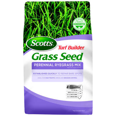 Scotts Turf Builder Perennial Ryegrass Sun/Shade Grass Seed 7 lb.