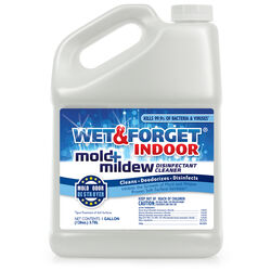 Wet and Forget  Mold and Mildew Remover  1 gal.