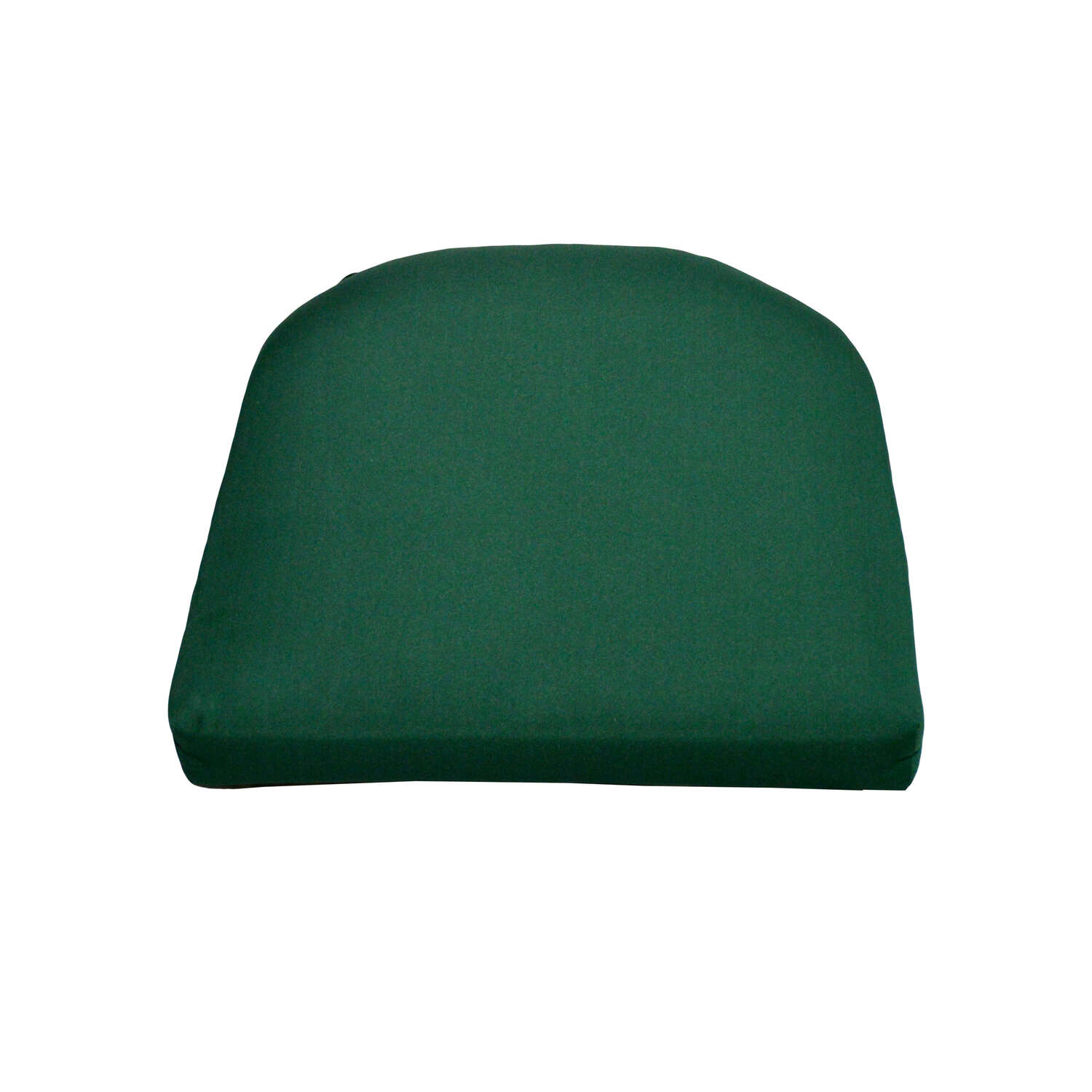 Casual Cushion  Green  Seating Cushion  18 in. 18 in. Polyester  2.5 in.