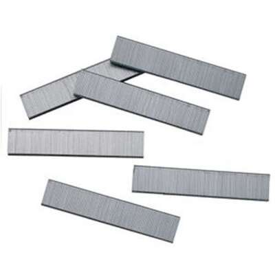 Bostitch  5/8 in. L Galvanized  Steel  Wire Staples  18 Ga.