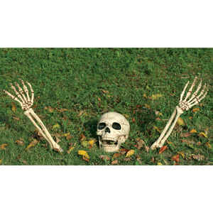 Seasons  Ground Breakers Skull and Arms  Halloween Decoration  14.5 in. H x 5  W x 5  L 3 pc.