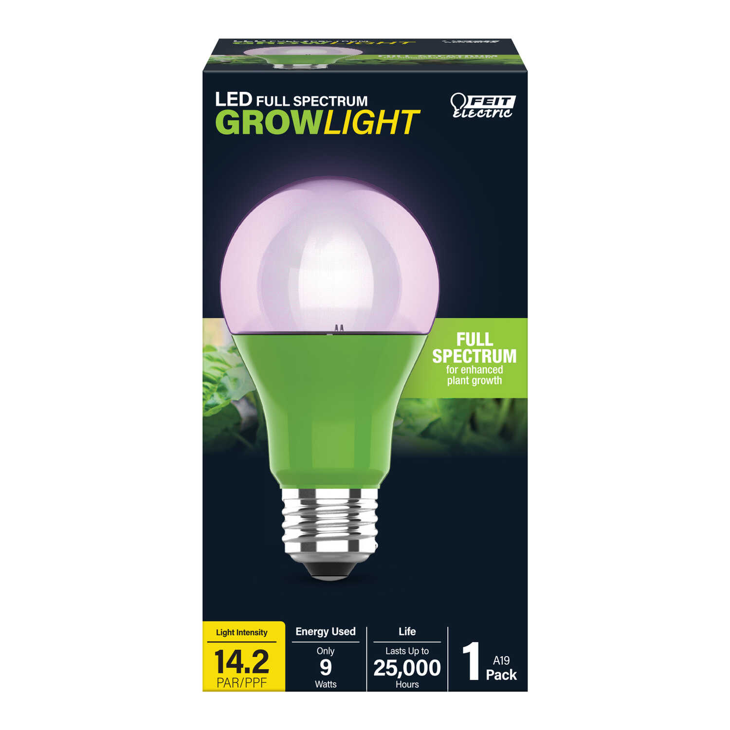 FEIT Electric  A19  E26 (Medium)  LED Bulb  White  60 Watt Equivalence 1 pk