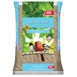 Ace  Safflower  Songbird  Wild Bird Food  Safflower Seeds  10 lb.