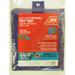 Ace  12 ft. W x 20 ft. L Medium Duty  Polyethylene  Tarp  Blue/Brown