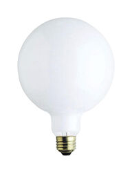 Westinghouse  60 watt G40  Globe  Incandescent Bulb  E26 (Medium)  White  1 pk