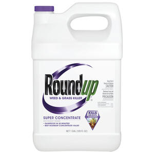 Roundup  Weed and Grass Killer  Concentrate  1 gal.