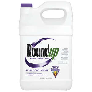 Roundup  Concentrate  Weed and Grass Killer  1 gal.