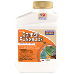 Bonide  Liquid Copper  Concentrated Liquid  Fungicide  16 oz.