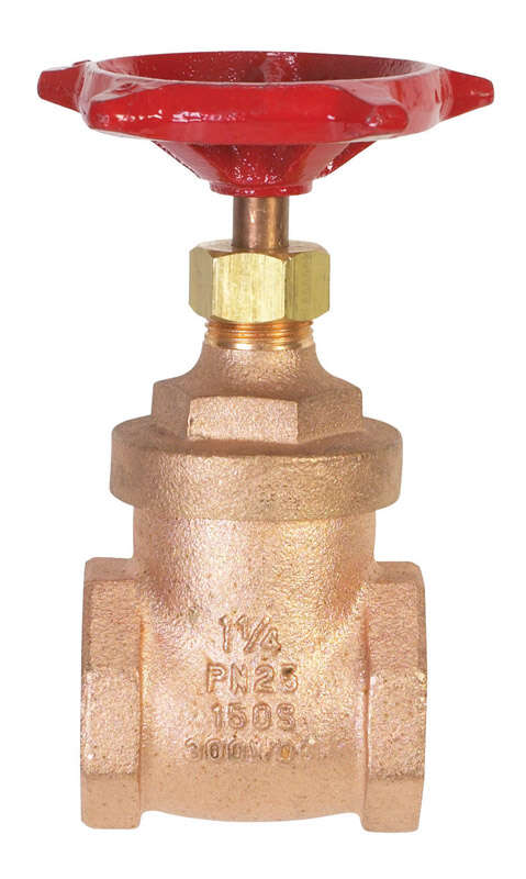 BK Products  ProLine  1-1/4 in. FIP  Brass  Gate Valve  Lead-Free