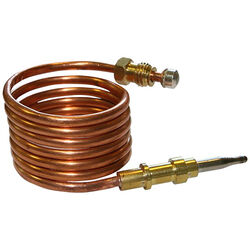 Eastman  39 in. L Thermocouple
