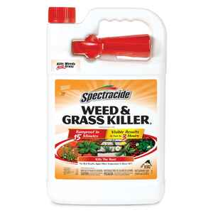 Spectracide  Weed and Grass Killer  RTU Liquid  1 gal.