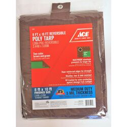 Ace  8 ft. W x 10 ft. L Medium Duty  Polyethylene  Tarp  Brown/Green