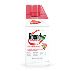 Roundup  Plus  Weed and Grass Killer  Concentrate  36.8 oz.